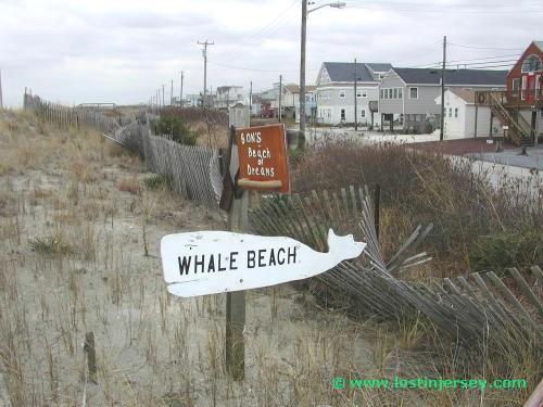 beachdream