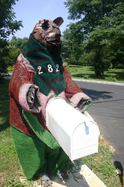 bear5001