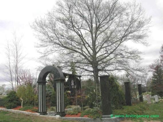 treebackground