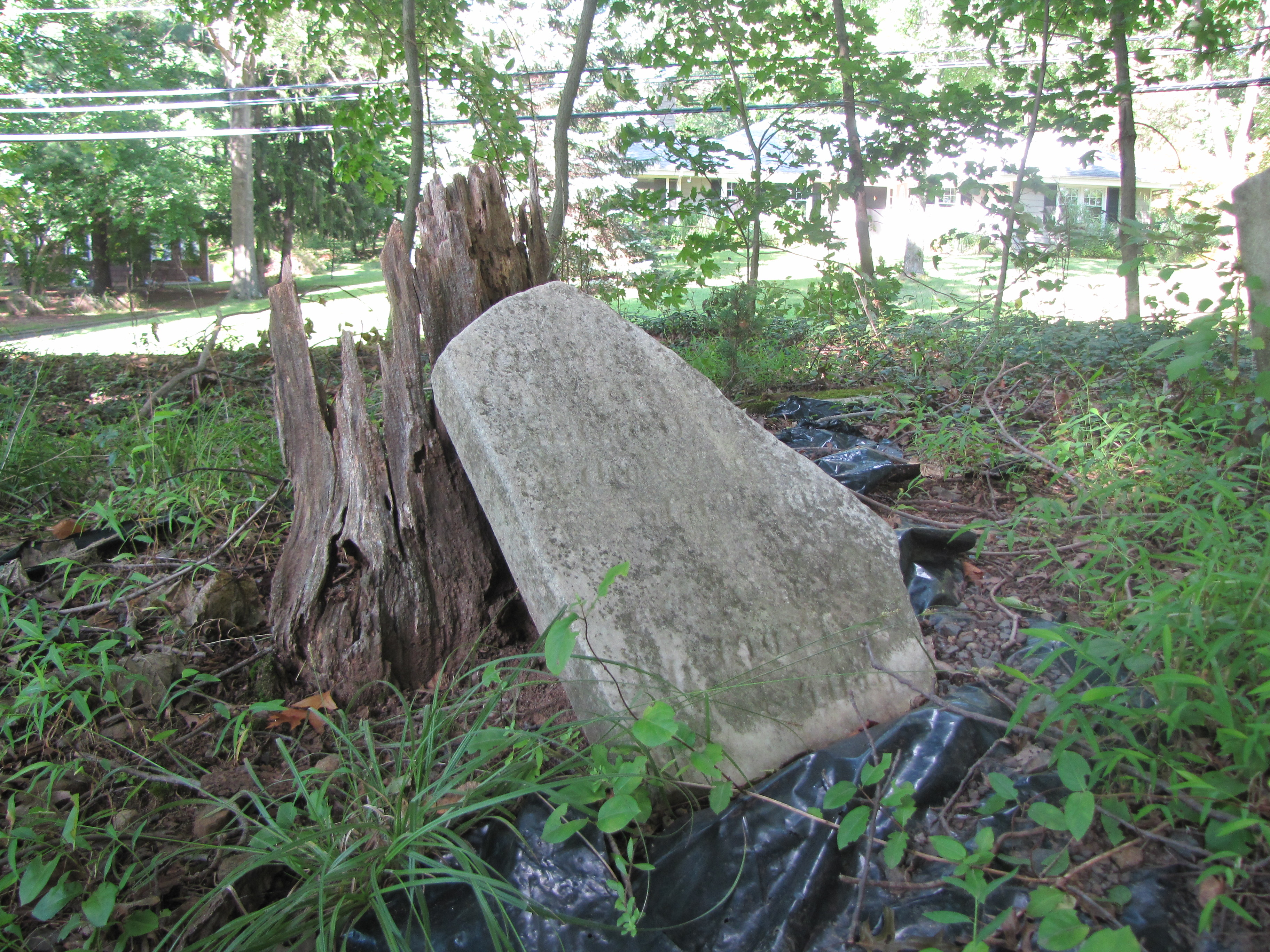 middlesex the lostinjersey blog located approximately 500 feet from foothill road and bridge rd in bridgewater is a burial plot known as the prince rodgers cemetery it has also been